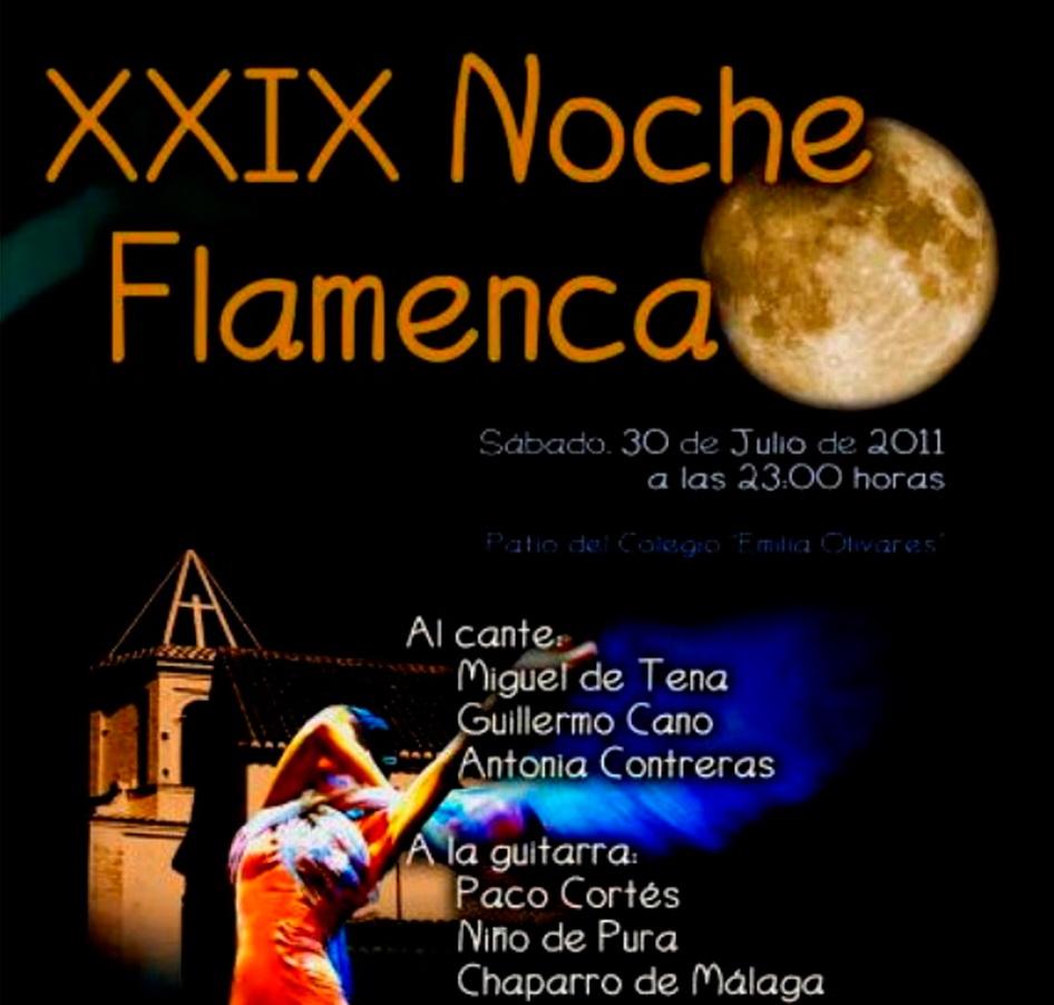 XXIX Noche Flamenca