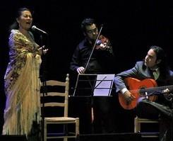 almagro-poesia-suena-flamenco